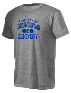 Undermountain Elementary Alternative Men's Eco Heather T-shirt