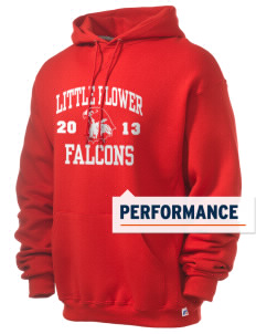 Little Flower Catholic School Falcons Russell Men's Dri-Power Hooded Sweatshirt