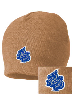 New Age Academy Learning Institute Dragons Embroidered Beanie