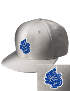 New Age Academy Learning Institute Dragons  Embroidered New Era Flat Bill Snapback Cap