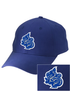 New Age Academy Learning Institute Dragons Embroidered Low-Profile Cap