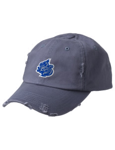 New Age Academy Learning Institute Dragons Embroidered Distressed Cap