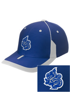 New Age Academy Learning Institute Dragons Embroidered M2 Universal Fitted Contrast Cap