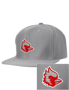 Madison Park Technical Vocational High School Cardinals Embroidered D-Series Cap