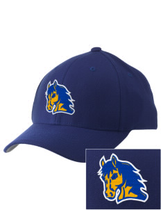 First Lutheran School Colts Embroidered Pro Model Fitted Cap
