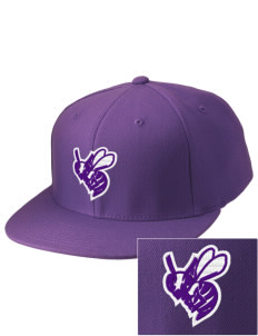 Deep Creek Central Elementary School Hornets Embroidered Diamond Series Fitted Cap