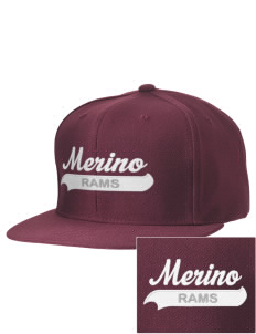 Merino Elementary School Rams Embroidered D-Series Cap