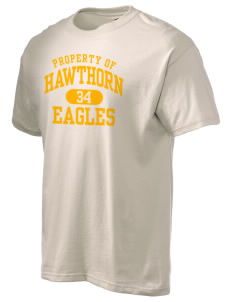 Hawthorn Eagles Hanes Men's 6 oz Tagless T-shirt