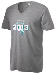 Robert L. Horbelt Dolphins Alternative Men's 3.7 oz Basic V-Neck T-Shirt
