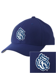 Queens University of Charlotte Royals Embroidered Pro Model Fitted Cap