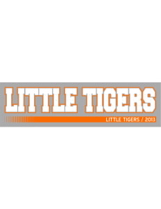"Hatchery Hill Elementary School Little Tigers Bumper Sticker 11"" x 3"""
