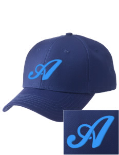 Alexander Elementary School Wildcats  Embroidered New Era Adjustable Structured Cap