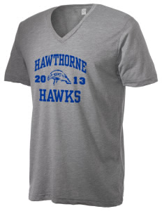 Hawthorne Elementary School Hawks Alternative Men's 3.7 oz Basic V-Neck T-Shirt