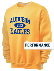 Audubon Elementary School Eagles  Russell Men's Dri-Power Crewneck Sweatshirt