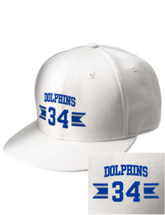 Eastwood Elementary School Dolphins  Embroidered New Era Flat Bill Snapback Cap
