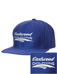 Eastwood Elementary School Dolphins Embroidered D-Series Cap