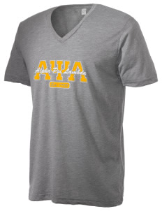 Alpha Psi Lambda Alternative Men's 3.7 oz Basic V-Neck T-Shirt