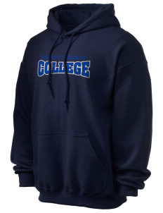Bellin College of Nursing College of Nursing Ultra Blend 50/50 Hooded Sweatshirt