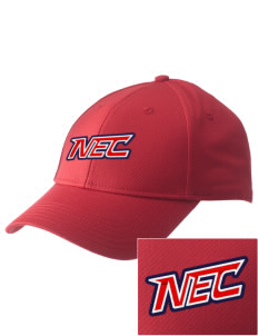 New England College Pilgrims  Embroidered New Era Adjustable Structured Cap
