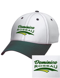 Dominica Embroidered New Era Snapback Performance Mesh Contrast Bill Cap