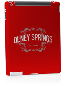 Olney Springs Apple iPad 2 Skin