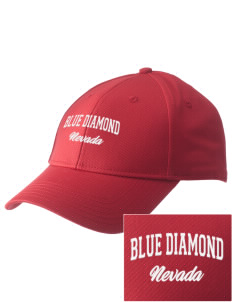 Blue Diamond  Embroidered New Era Adjustable Structured Cap