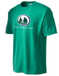 Bemidji State University Beavers Men's Essential T-Shirt
