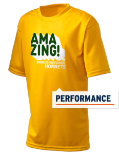 Emmaus High School Hornets  Holloway Kid's Zoom Performance T-Shirt