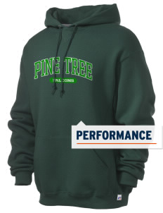 Pine Tree Elementary School Falcons Russell Men's Dri-Power Hooded Sweatshirt
