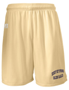 "Desert Hot Springs High School Golden Eagles  Russell Men's Mesh Shorts, 7"" Inseam"