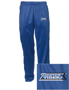 Hester Elementary School Tigers Embroidered Men's Tricot Track Pants