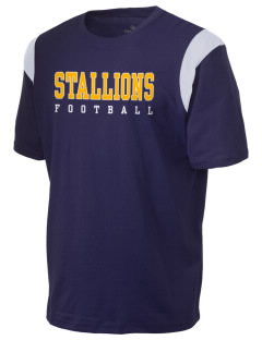 Saint Viator School Stallions Holloway Men's Rush T-Shirt