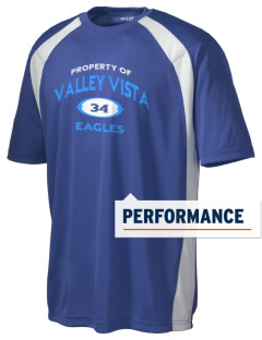 Valley Vista High School Eagles Men's Dry Zone Colorblock T-Shirt
