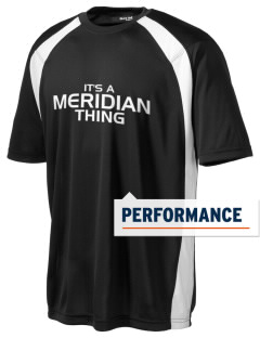 Meridian Elementary School Mountain Lions Men's Dry Zone Colorblock T-Shirt