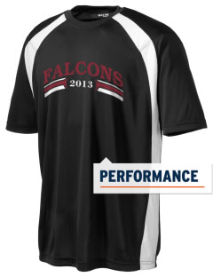 Ventnor Educational Community Complex Falcons Men's Dry Zone Colorblock T-Shirt