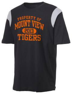 Mount View Elementary School Tigers Holloway Men's Rush T-Shirt
