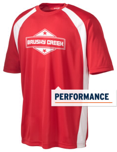Brushy Creek Men's Dry Zone Colorblock T-Shirt