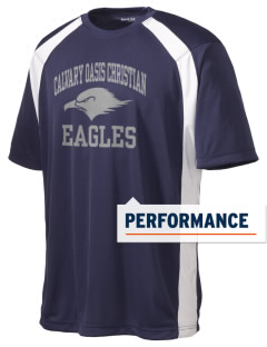 Calvary Oasis Christian School Eagles Men's Dry Zone Colorblock T-Shirt