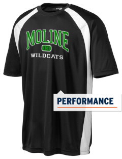 Moline Elementary School Wildcats Men's Dry Zone Colorblock T-Shirt