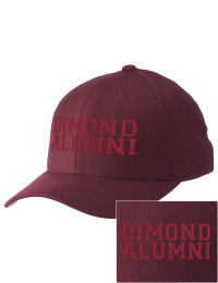 Dimond High School Alumni