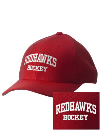 Naperville Central High School Hockey