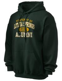Lithia Springs High School Alumni
