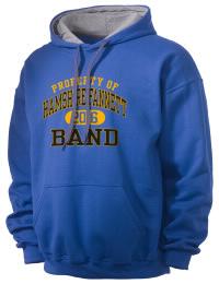 Hamshire Fannett High SchoolBand