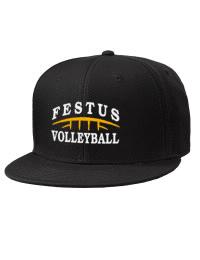 Festus High SchoolVolleyball
